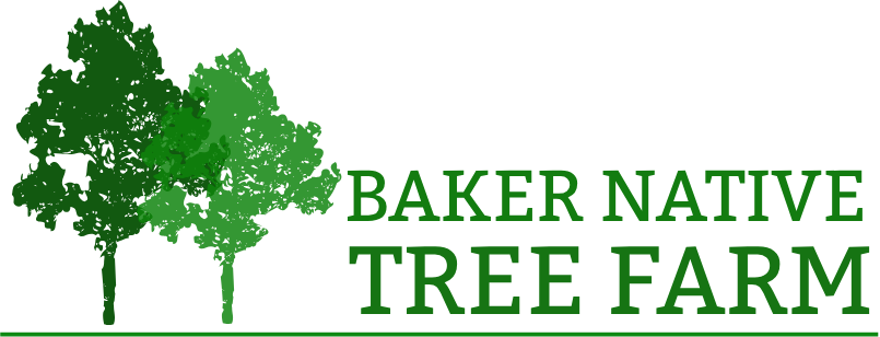 Baker Tree Farm -